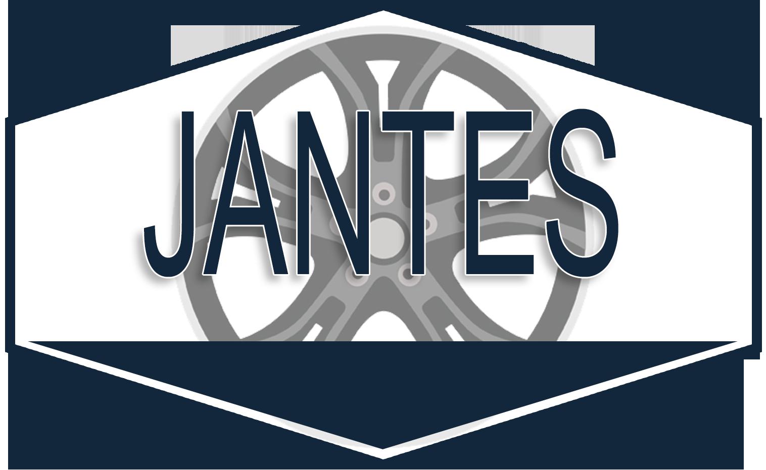 Catégorie: JANTES